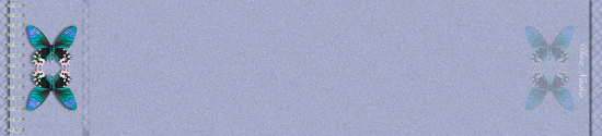 cahier-violet-bleu.png