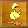 canard.png