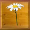fleur-1.png